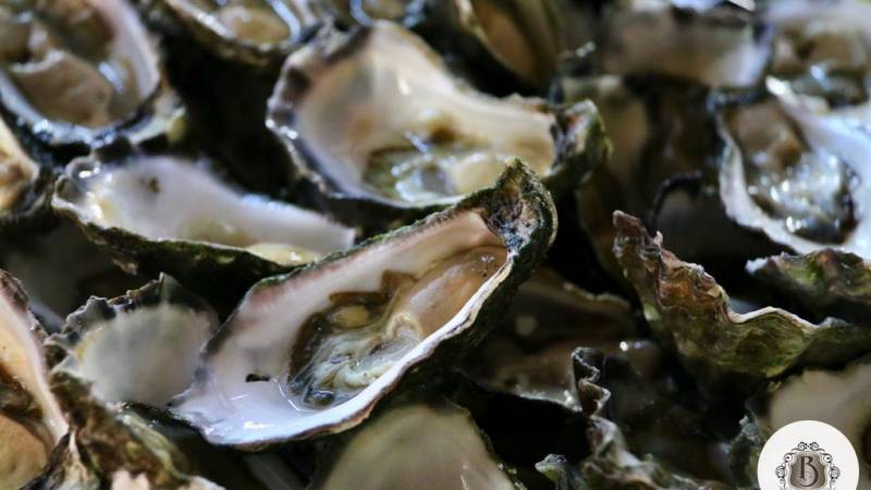 Oysters: delicious and healthy?